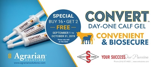 Convert Day-One Calf Gel