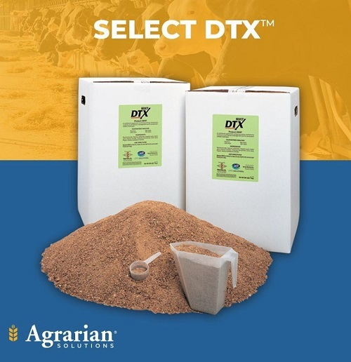 Select DTX